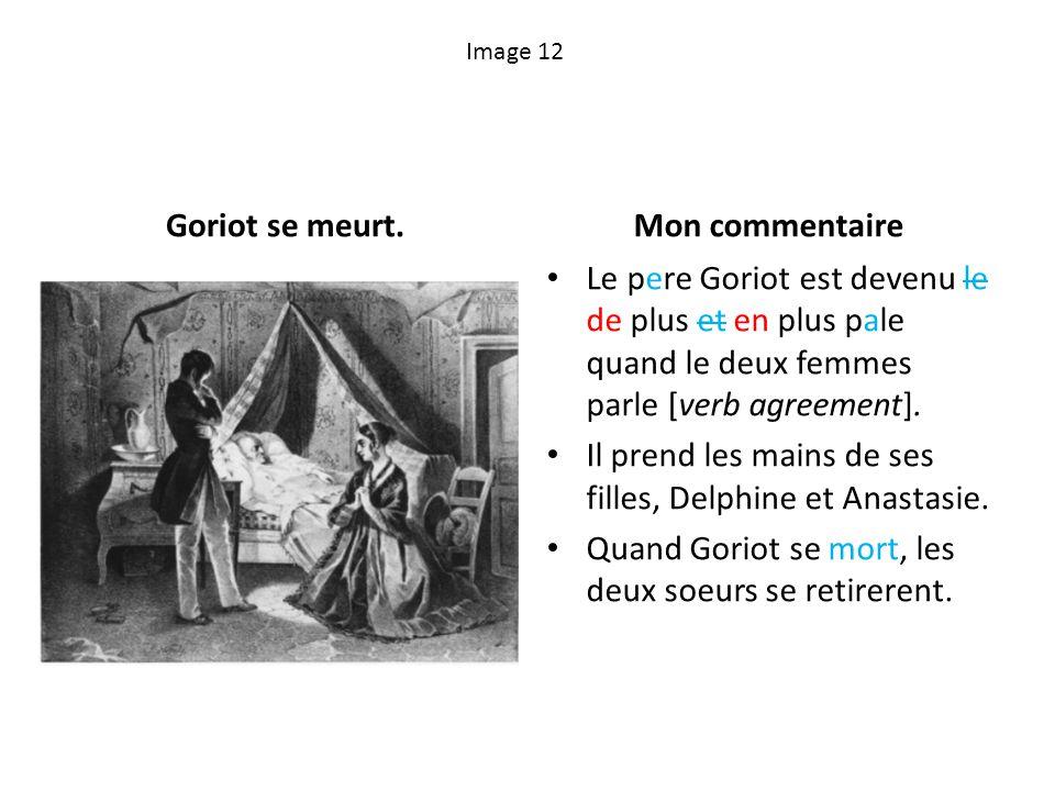 Goriot se meurt. Mon commentaire