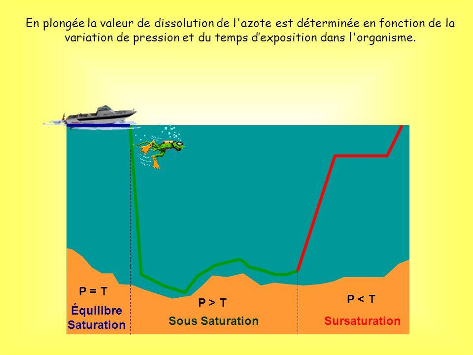 En plongée la valeur de dissolution de l azote est déterminée en fonction de la variation de pression et du temps d'exposition dans l organisme.