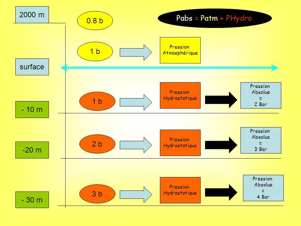 2000 m Pabs = Patm + PHydro 0.8 b 1 b surface 1 b - 10 m 2 b -20 m 3 b