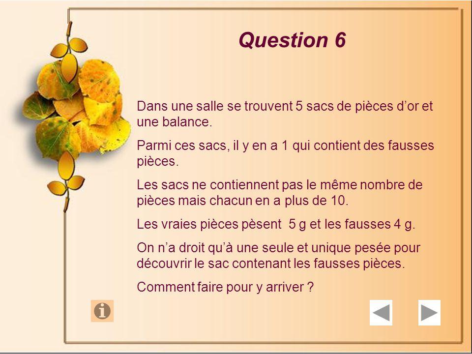 Question 6 Dans une salle se trouvent 5 sacs de pièces d'or et une balance. Parmi ces sacs, il y en a 1 qui contient des fausses pièces.