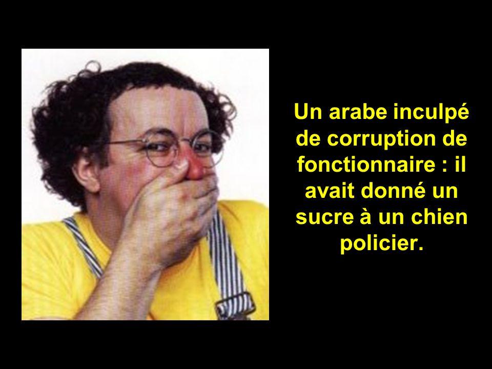 Un arabe inculpé de corruption de fonctionnaire : il avait donné un sucre à un chien policier.