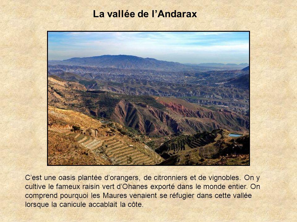 La vallée de l'Andarax