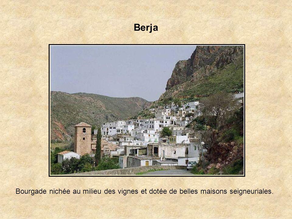 Berja Bourgade nichée au milieu des vignes et dotée de belles maisons seigneuriales.