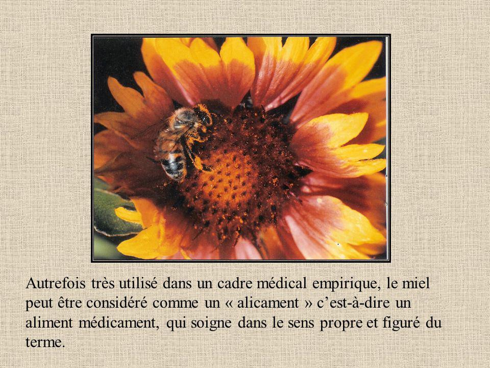 Autrefois très utilisé dans un cadre médical empirique, le miel peut être considéré comme un « alicament » c'est-à-dire un aliment médicament, qui soigne dans le sens propre et figuré du terme.