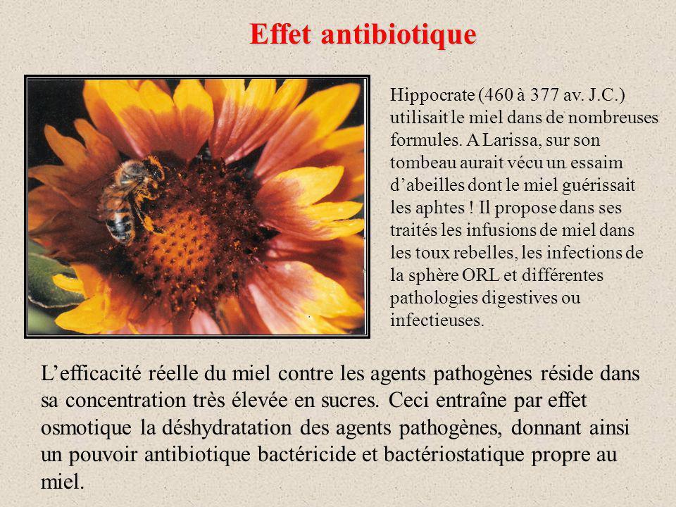 Effet antibiotique