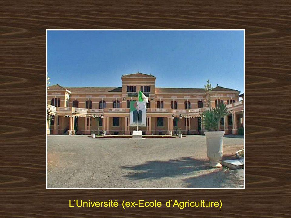 L'Université (ex-Ecole d'Agriculture)