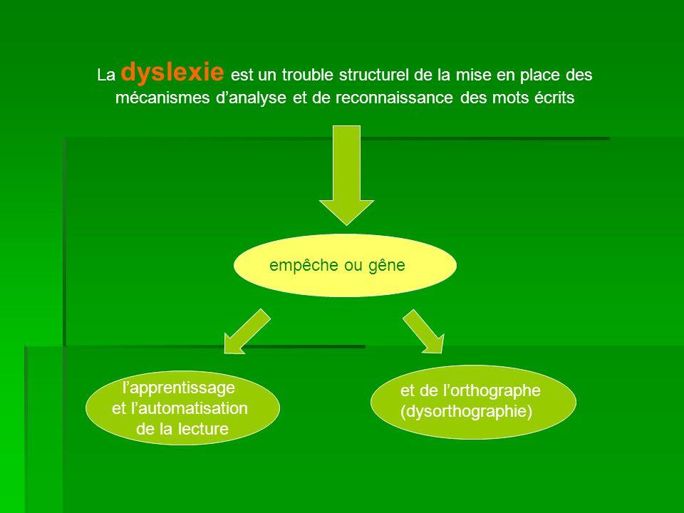 La dyslexie est un trouble structurel de la mise en place des mécanismes d'analyse et de reconnaissance des mots écrits