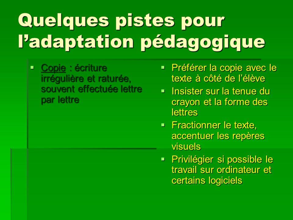 Quelques pistes pour l'adaptation pédagogique