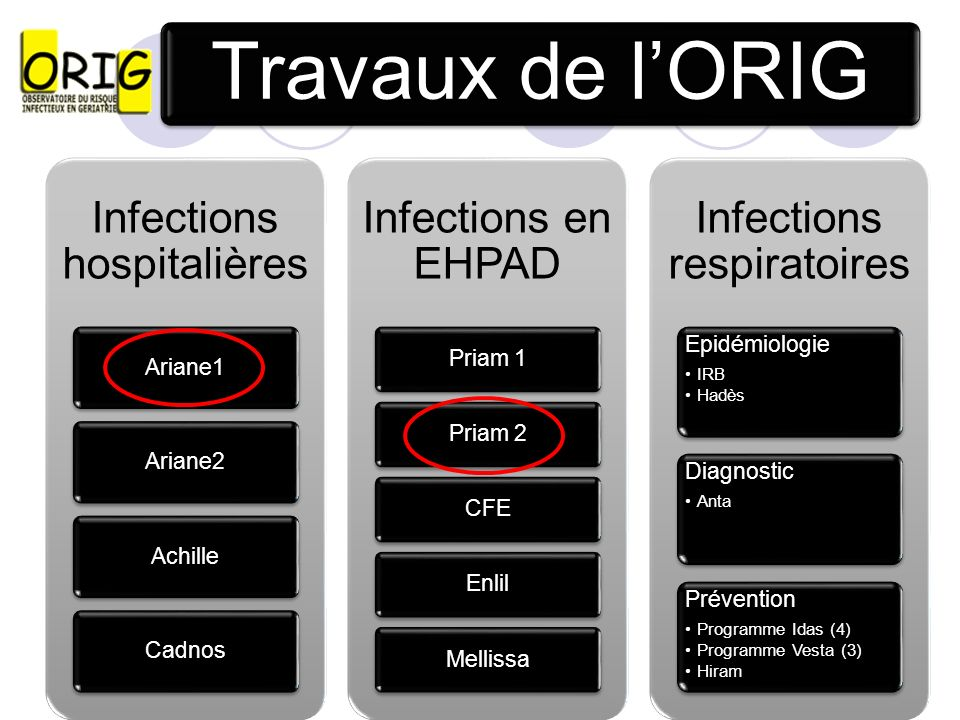 Travaux de l'ORIG 7 Infections hospitalières Ariane1 Ariane2 Achille