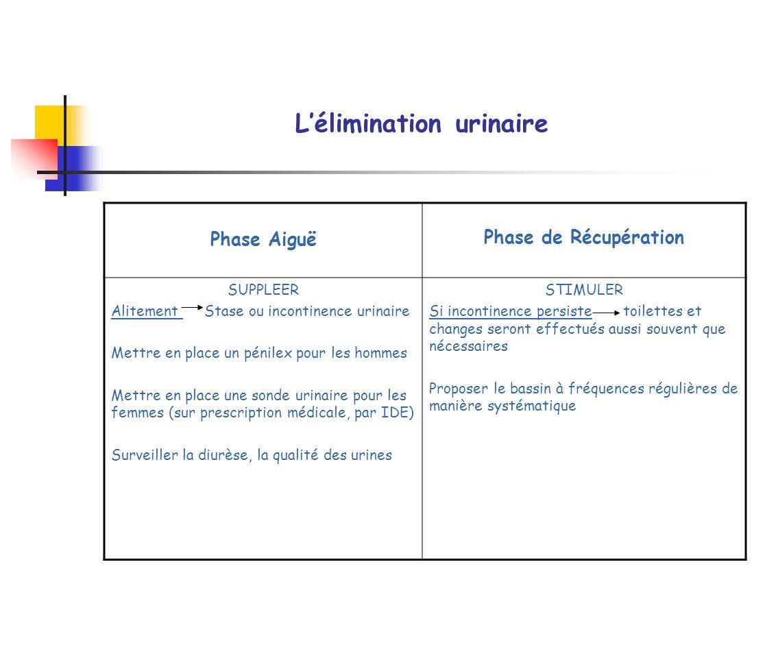 L'élimination urinaire