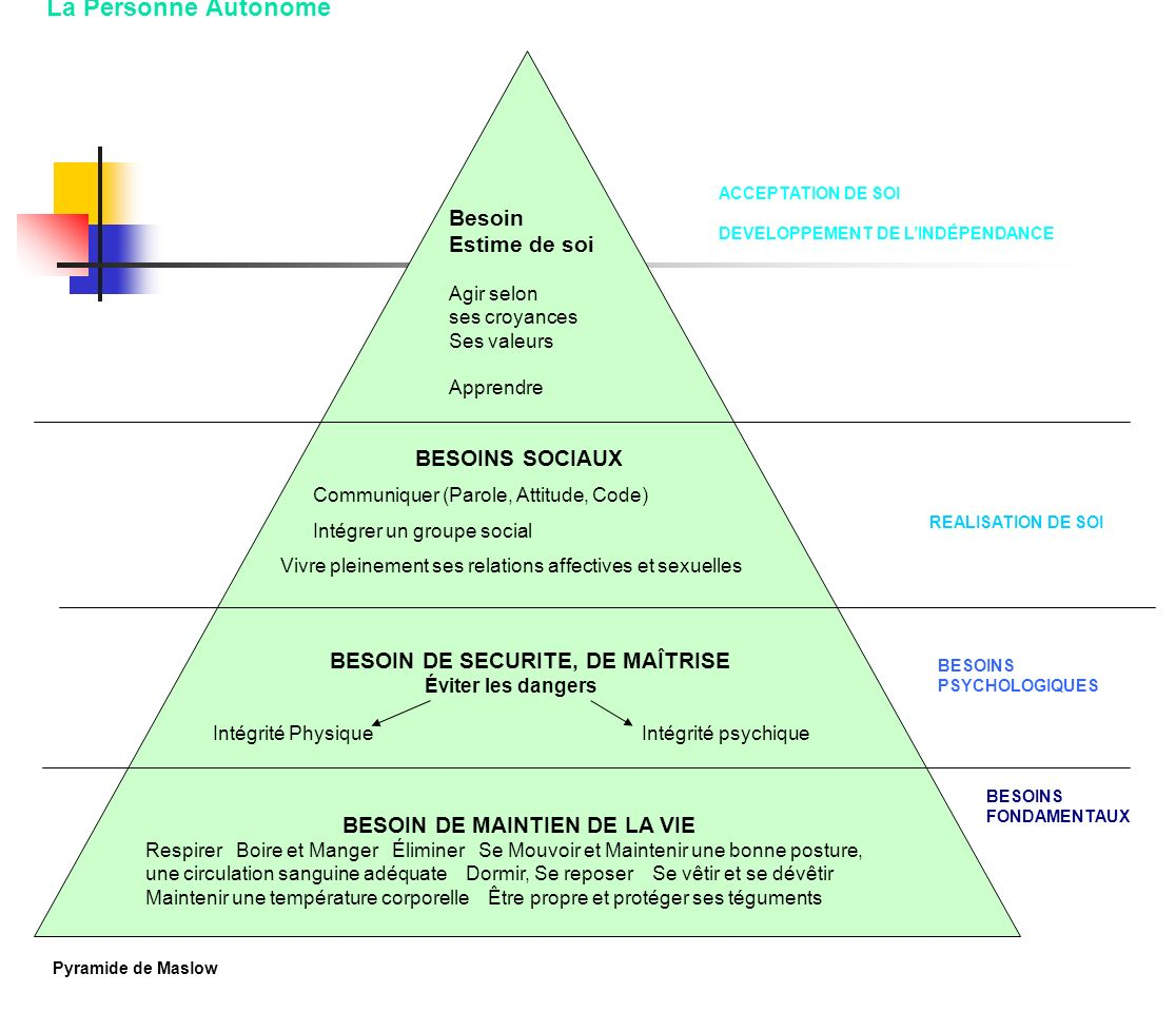 BESOIN DE SECURITE, DE MAÎTRISE BESOIN DE MAINTIEN DE LA VIE