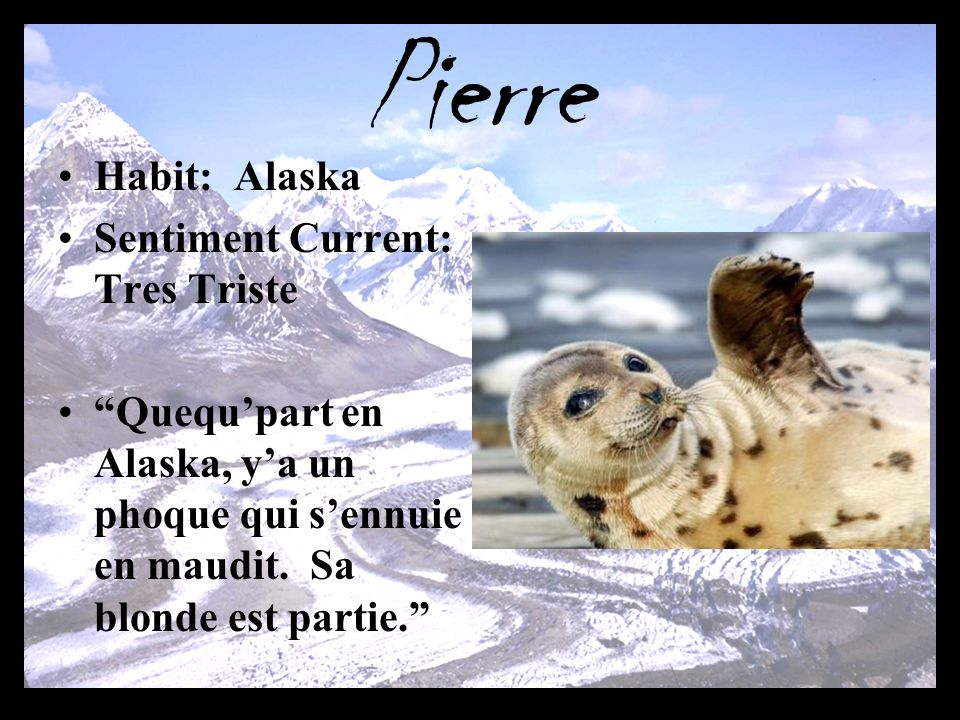Pierre Habit: Alaska Sentiment Current: Tres Triste