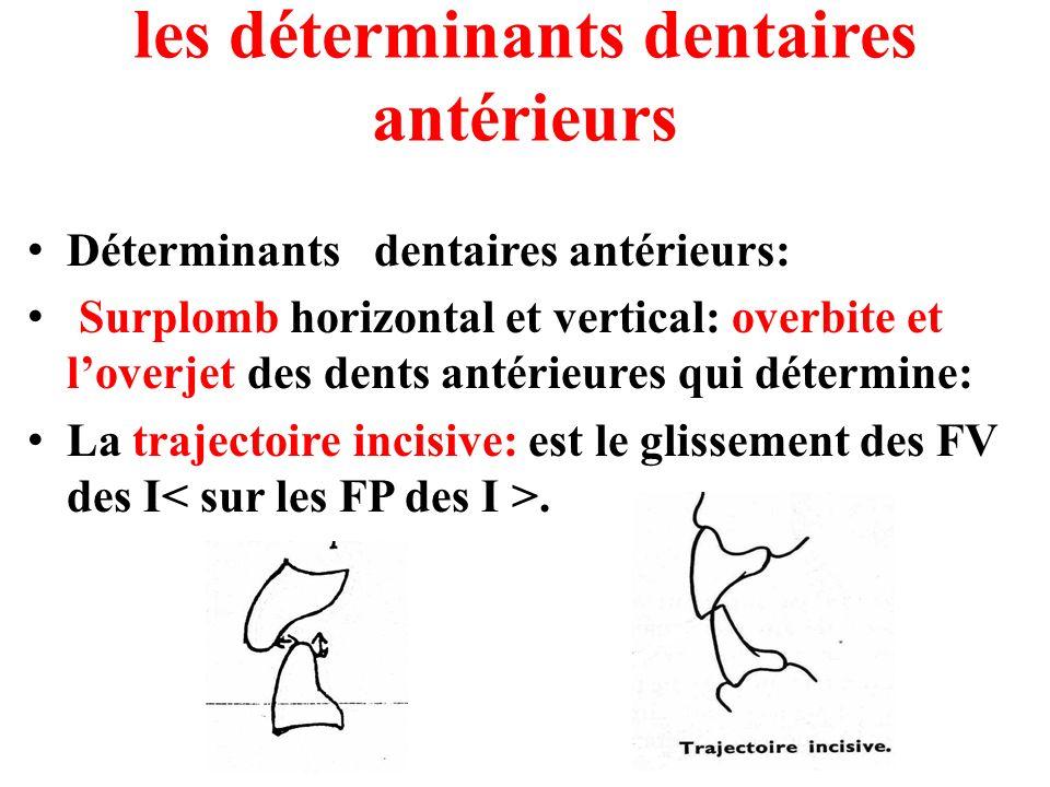 les déterminants dentaires antérieurs