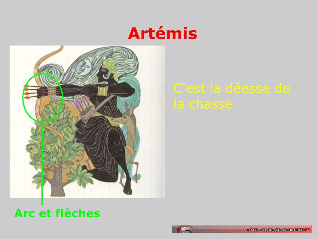 Artémis Arc et flèches C est la déesse de la chasse