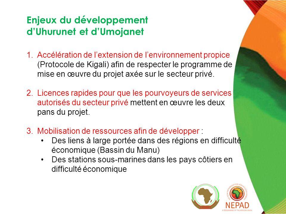 Enjeux du développement d'Uhurunet et d'Umojanet