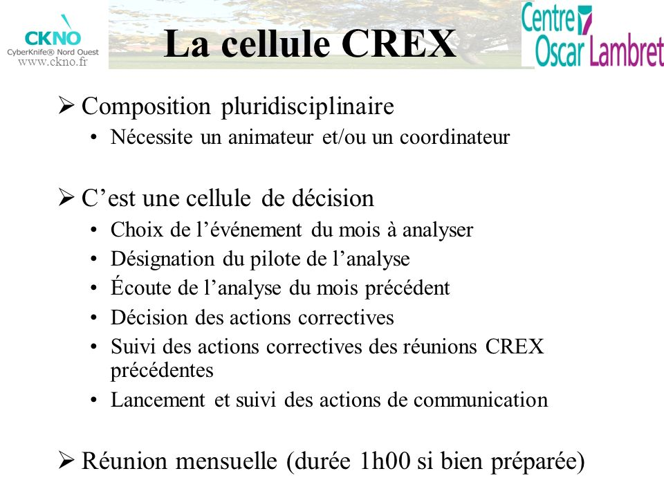 La cellule CREX Composition pluridisciplinaire