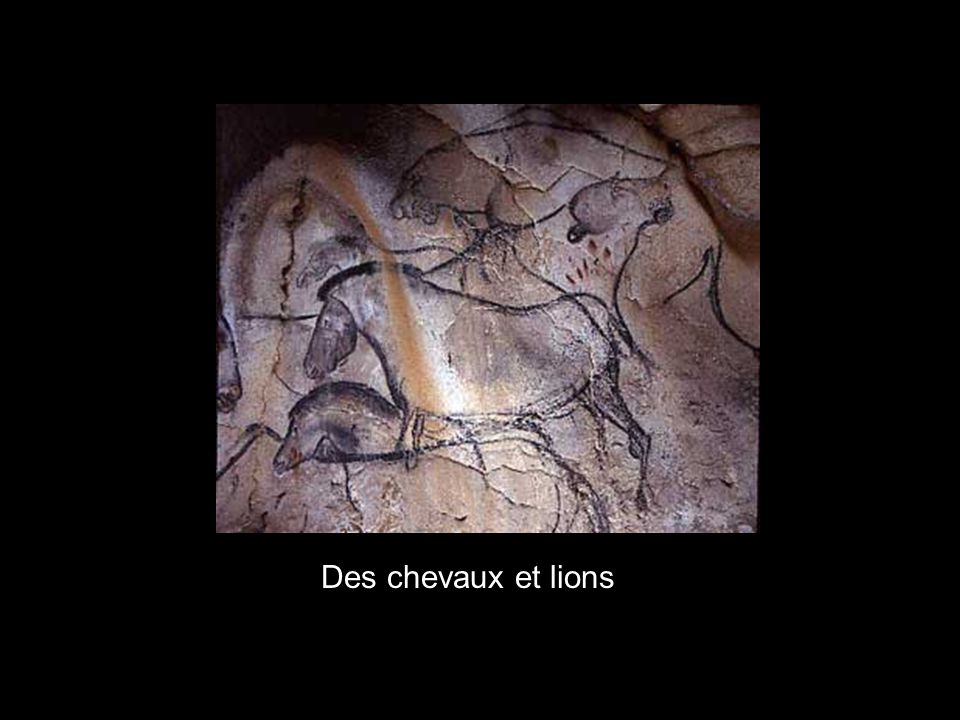Des chevaux et lions