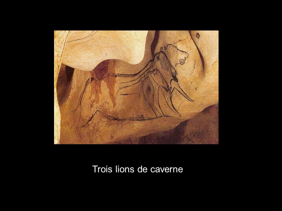 x Trois lions de caverne