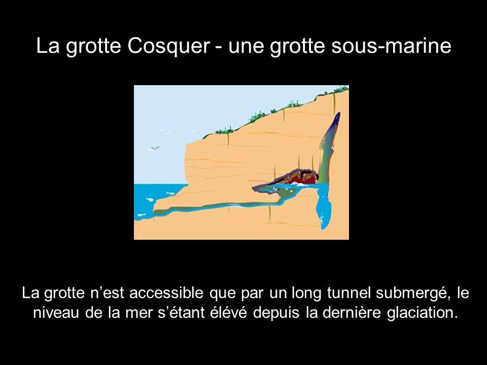 La grotte Cosquer - une grotte sous-marine
