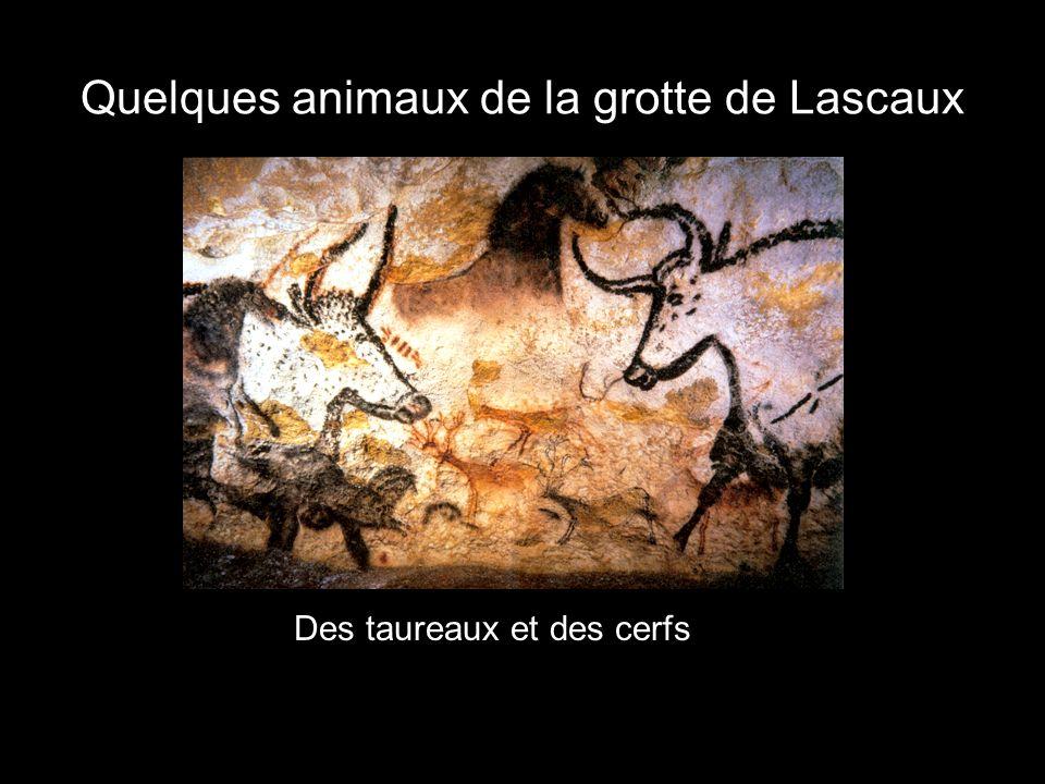 Quelques animaux de la grotte de Lascaux