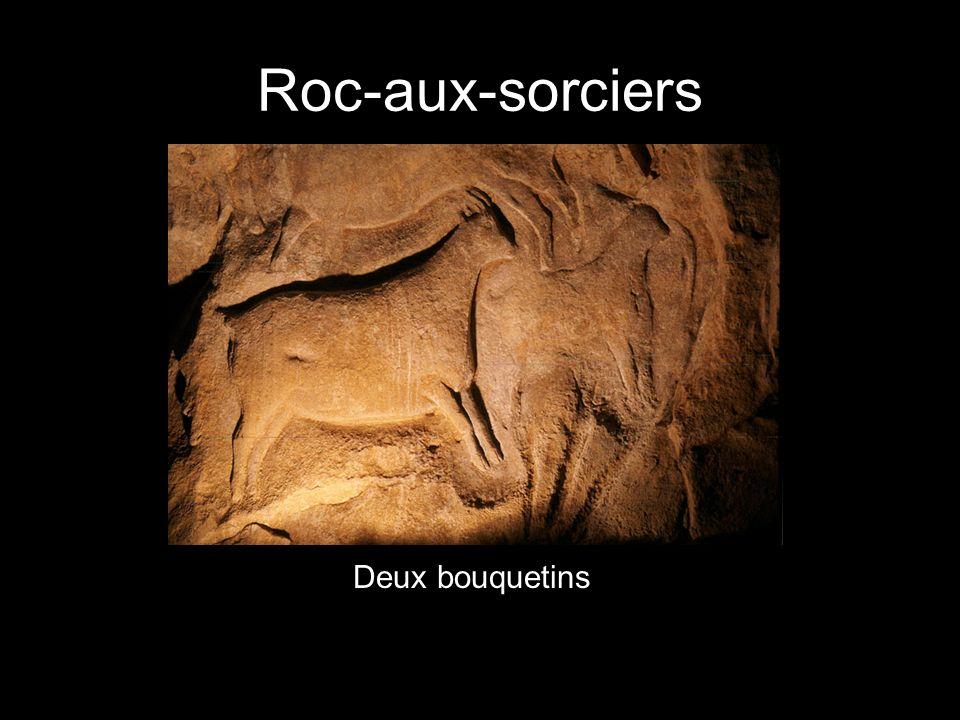 Roc-aux-sorciers Deux bouquetins