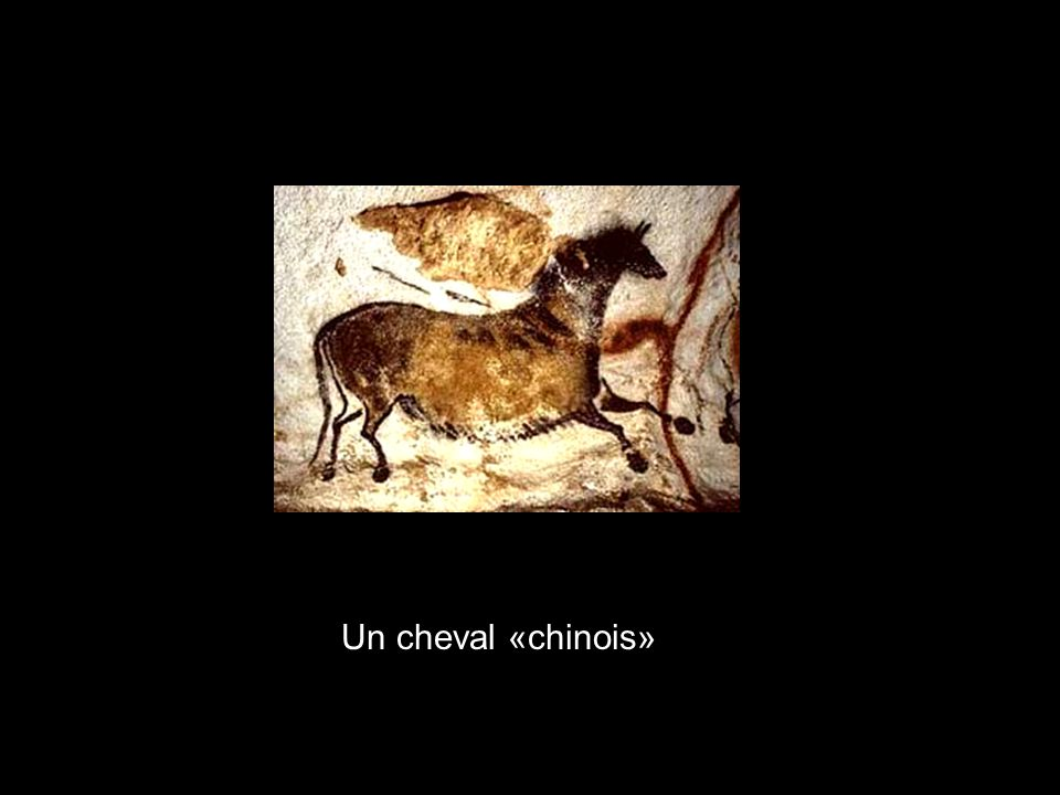 Un cheval «chinois»
