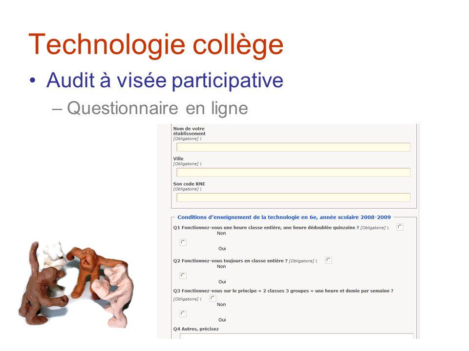 Technologie collège Audit à visée participative Questionnaire en ligne