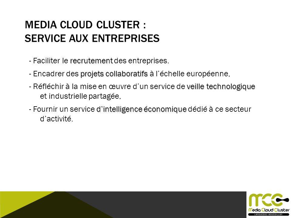 Media Cloud CLUSTER : Service aux Entreprises