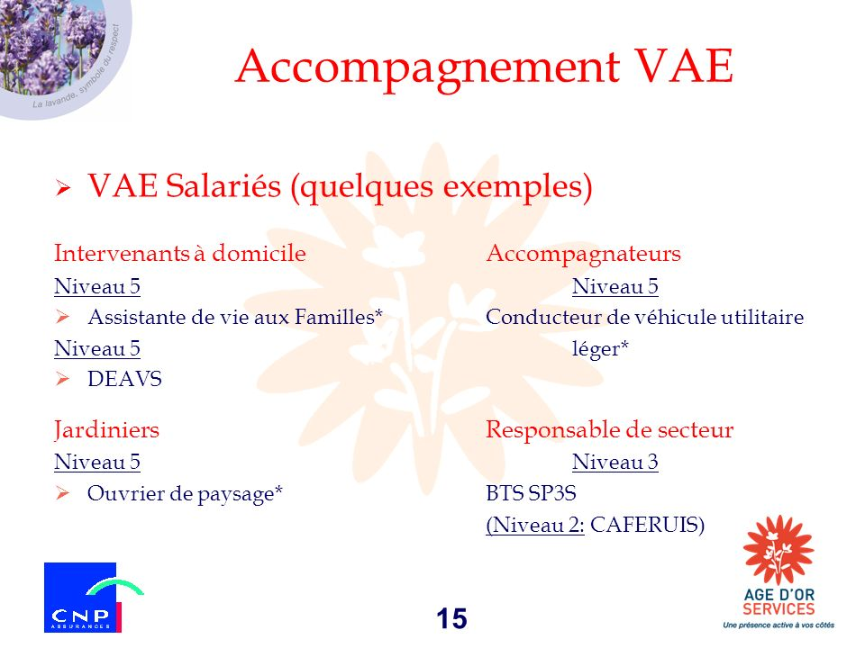 Accompagnement VAE VAE Salariés (quelques exemples)