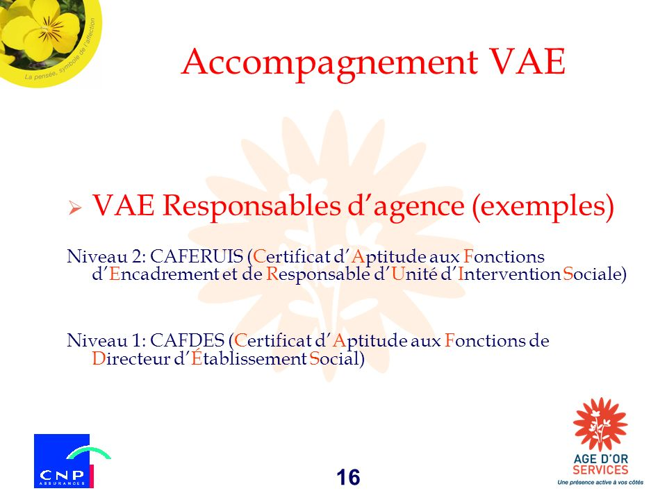 Accompagnement VAE VAE Responsables d'agence (exemples)