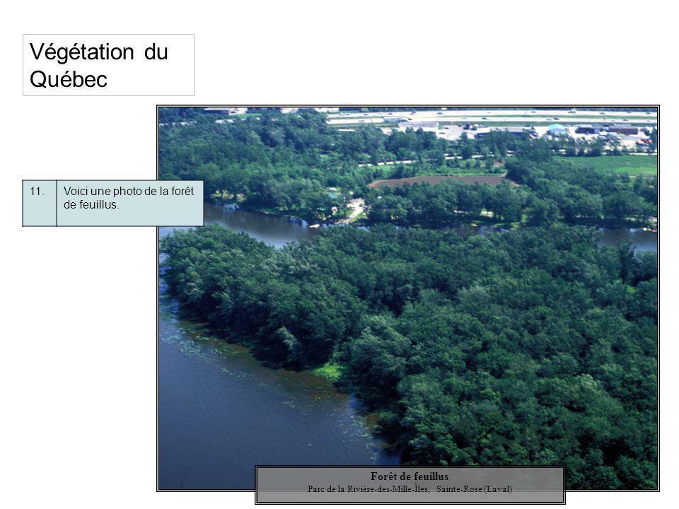 Parc de la Rivière-des-Mille-Îles, Sainte-Rose (Laval)