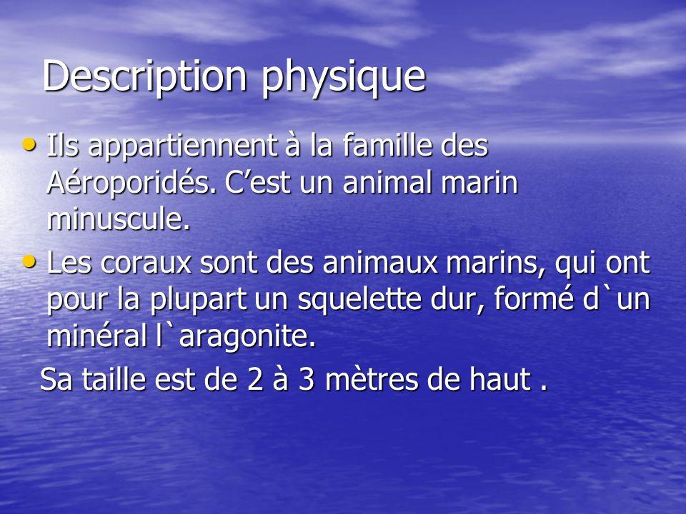 Description physique Ils appartiennent à la famille des Aéroporidés. C'est un animal marin minuscule.