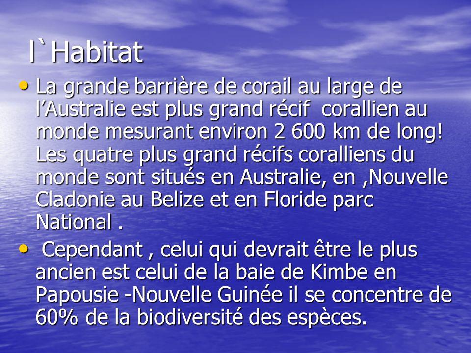 l`Habitat