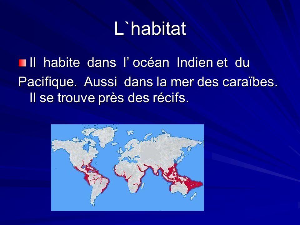 L`habitat Il habite dans l' océan Indien et du