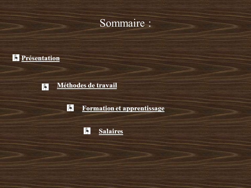 Sommaire : Présentation Méthodes de travail Formation et apprentissage