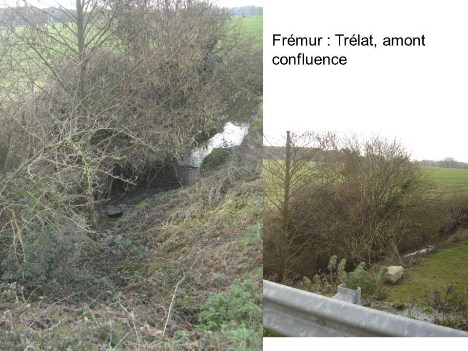 Frémur : Trélat, amont confluence