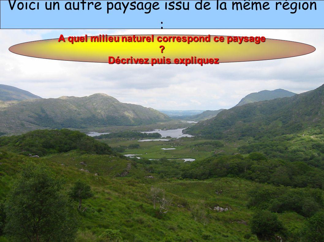 A quel milieu naturel correspond ce paysage Décrivez puis expliquez