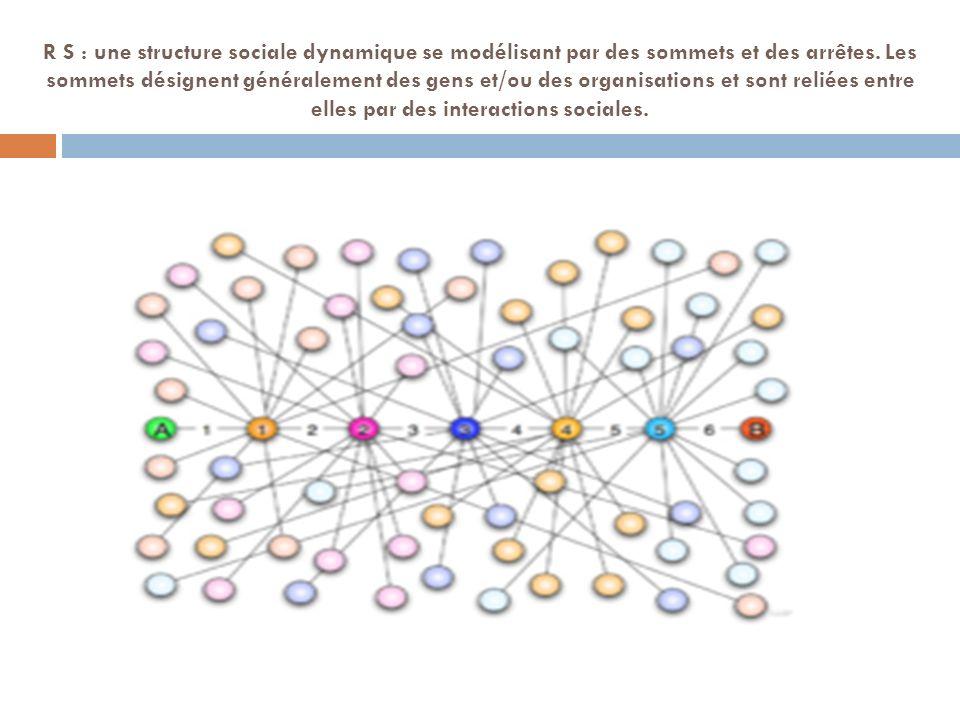 R S : une structure sociale dynamique se modélisant par des sommets et des arrêtes.