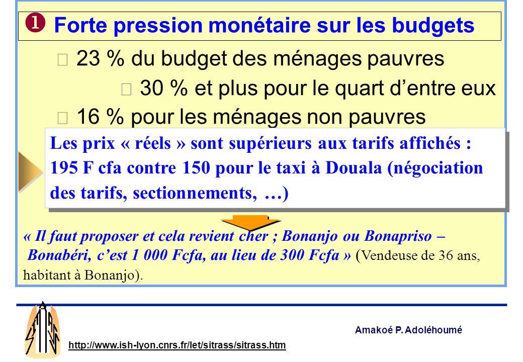◆ 23 % du budget des ménages pauvres
