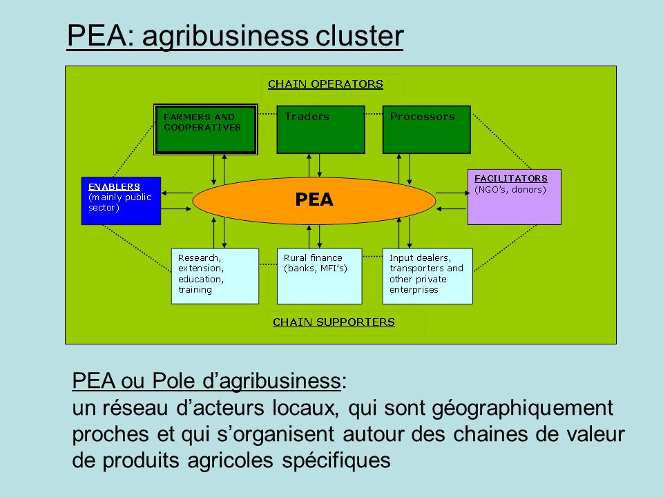 PEA: agribusiness cluster