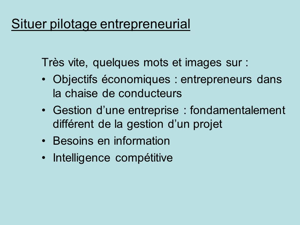 Situer pilotage entrepreneurial