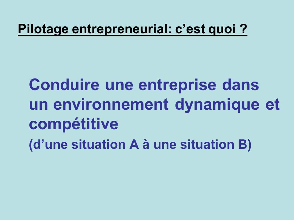 Pilotage entrepreneurial: c'est quoi