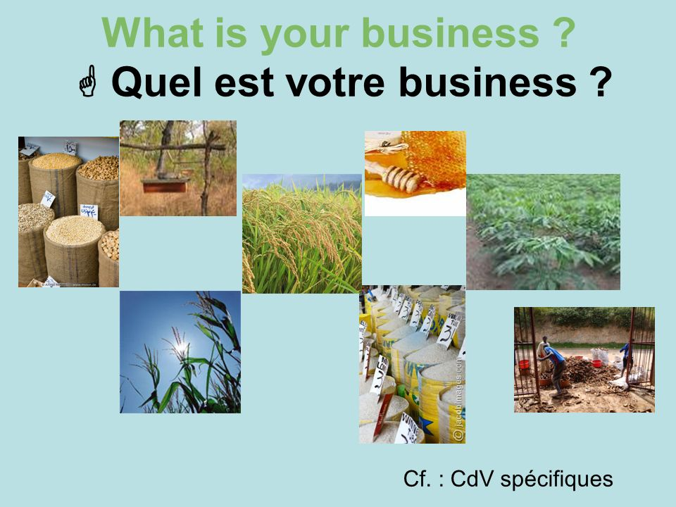 What is your business  Quel est votre business