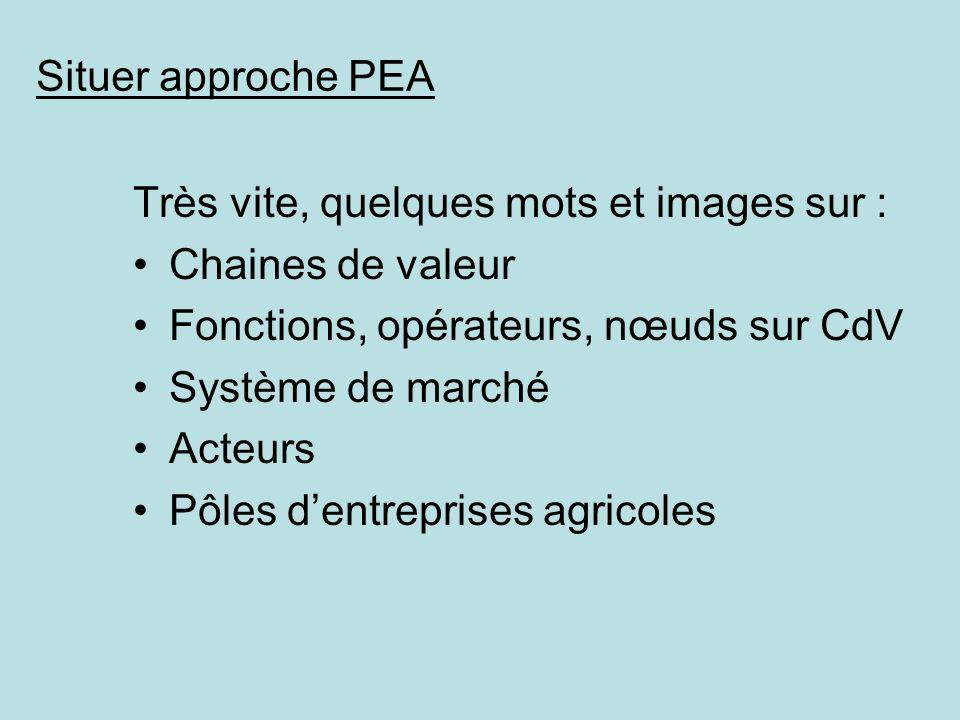 Situer approche PEA Très vite, quelques mots et images sur : Chaines de valeur. Fonctions, opérateurs, nœuds sur CdV.