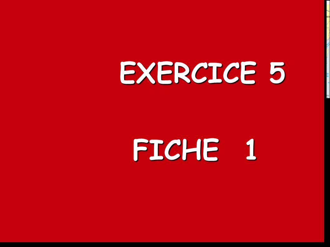 EXERCICE 5 FICHE 1. DOCUMENT 2 : Le G.A.P. : atouts et limites d un projet titanesque.