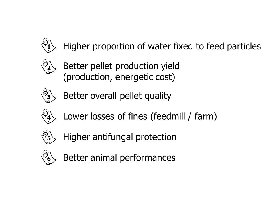 Higher proportion of water fixed to feed particles
