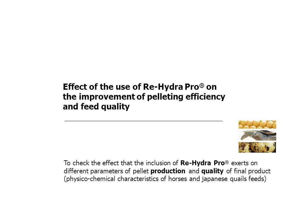 Effect of the use of Re-Hydra Pro® on the improvement of pelleting efficiency and feed quality