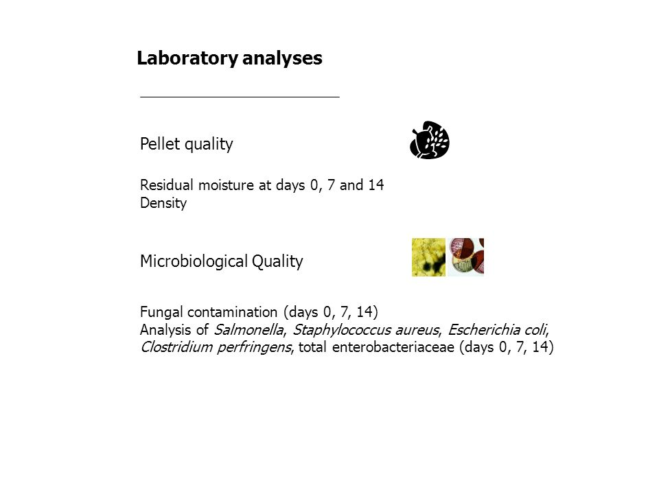 Laboratory analyses Pellet quality Microbiological Quality