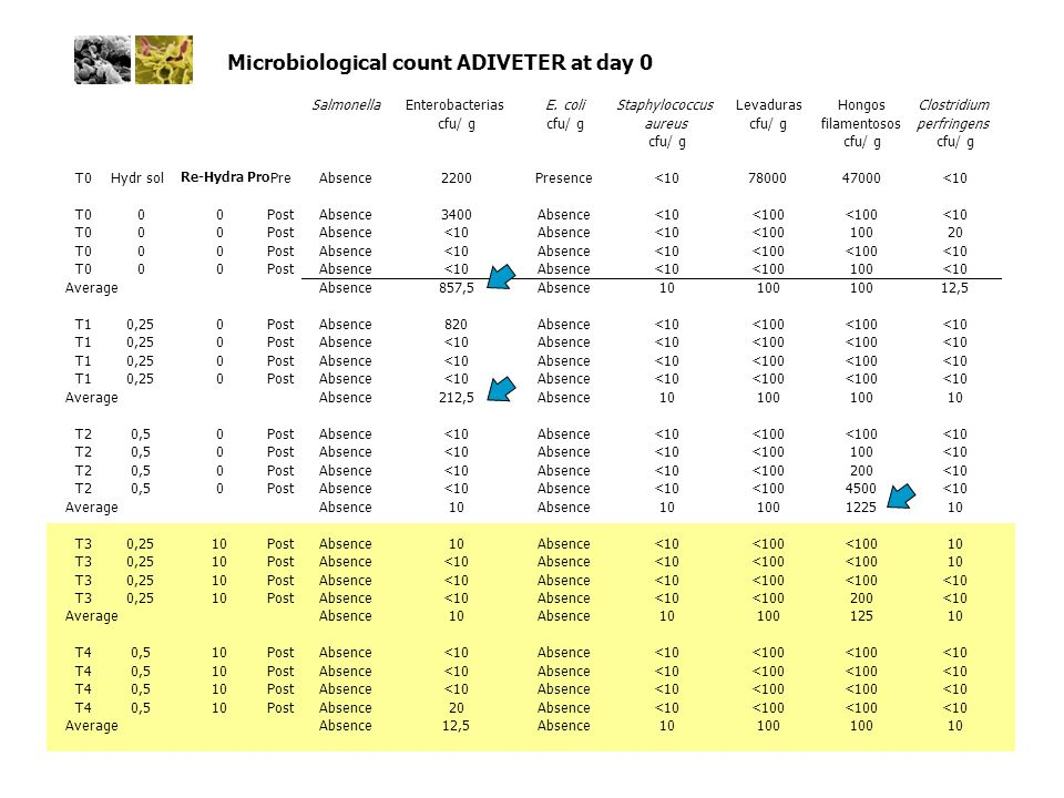 Microbiological count ADIVETER at day 0