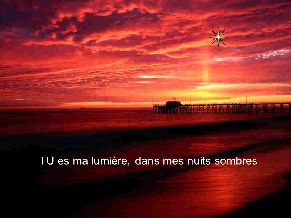 TU es ma lumière, dans mes nuits sombres